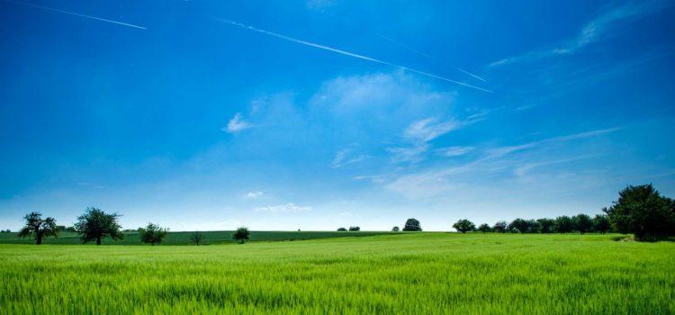 Tutela dell'ambiente, della salute e del territorio
